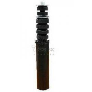 Пылезащитный комилект, амортизатор 30377 asam - DACIA LOGAN пикап (US_) пикап 1.4