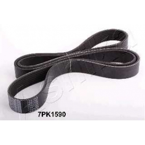 ASHIKA 112-7PK1590 V-ribbed Belt