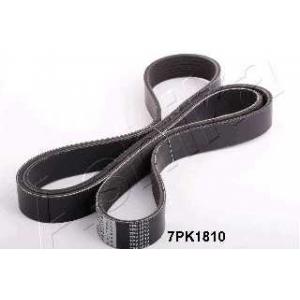 ASHIKA 112-7PK1810 V-ribbed Belt