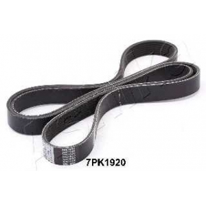 ASHIKA 112-7PK1920 V-ribbed Belt