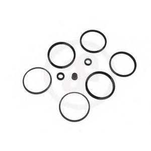 Ремкомплект, тормозной суппорт d4077 seinsa - LAND ROVER RANGE ROVER I (AE, AN, HAA, HAB, HAM, HBM, RE, RN) вездеход закрытый 3.5 Vogue