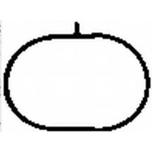 BGA MG5790 Inlet manifold