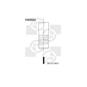 BGA V163521 Valve