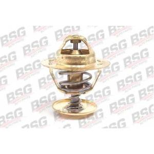 BSG BSG 30-125-004 Термостат
