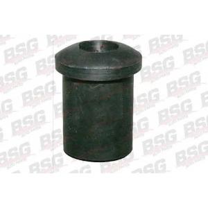 BSG BSG30-700-030 Втулка рессоры передняя