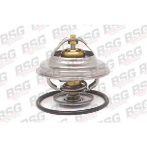BSG bsg60-125-001 Термостат
