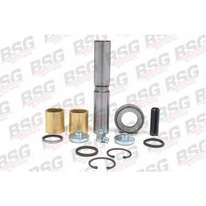 BSG BSG 60-445-001 Шкворень 207-310 (23x131.5) на втулках