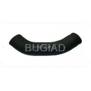 BUGIAD 81622