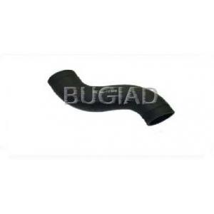 BUGIAD 81623