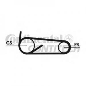 CONTITECH 4PK922 ELAST T1 Поликлиновой ременный комплект