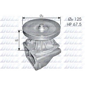 DOLZ S124 Water pump