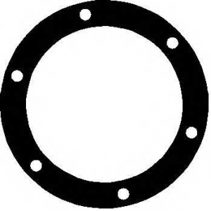ELRING 190.179 VW Gasket oil strainer