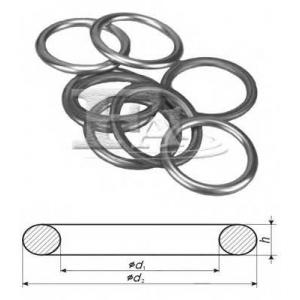 FA1 521870100 Уплотнительное кольцо, резьбовая пр