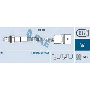 FAE 75353