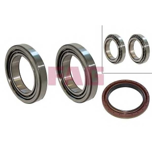 FAG 713690900 Hub bearing kit