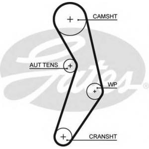 Ремень ГРМ 5503xs gates - FIAT 500 Наклонная задняя часть 1.4 Abarth