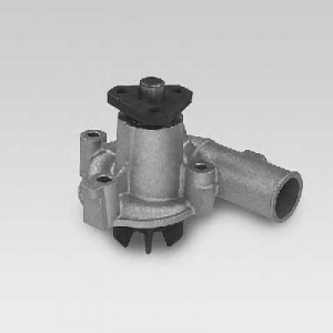 HEPU P821 Water pump