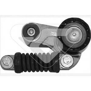 HUTCHINSON T2013 Натяжной ролик, поликлиновой  ремень