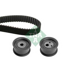 INA 530055410 Belt Set