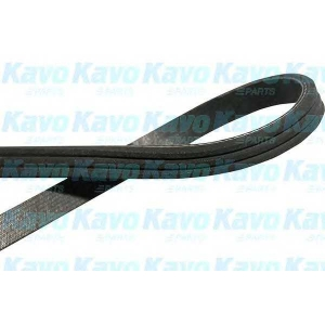 KAVO PARTS DMV-1502 V-ribbed Belt