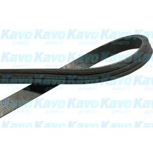 KAVO PARTS DMV-8507 V-ribbed Belt