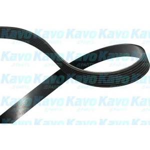 KAVO PARTS DMV-9102 V-ribbed Belt