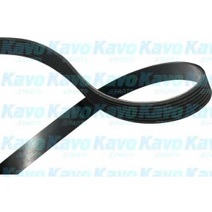 KAVO PARTS DMV-9111 V-ribbed Belt