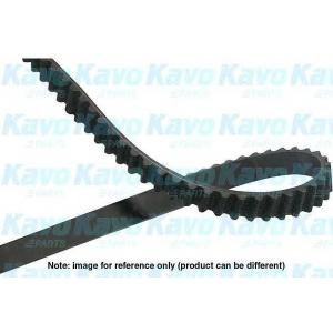 KAVO PARTS DTB-9010 Timing belt