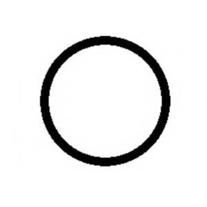 PAYEN HA5032 Прокладка впускн. колектора PSA TU5JP4 (кольцо)