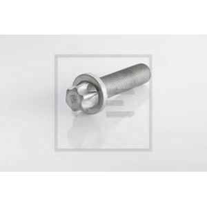 PE Automotive 296.001-00A Болт, диск тормозного механизма