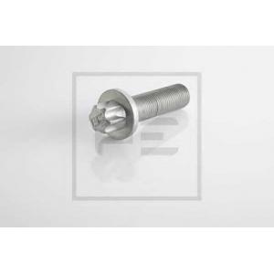 PE Automotive 296.002-00A Болт, диск тормозного механизма