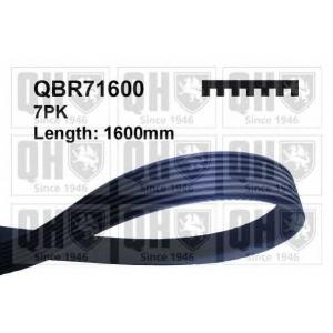 QH QBR71600 Ремiнь клиновий 7pk#1600