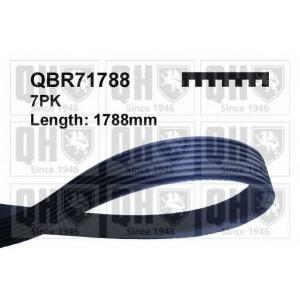 QUINTON HAZELL QBR71788 Поликлиновой ремень