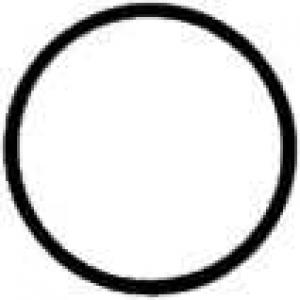 417207730 reinz Уплотнительное кольцо T2