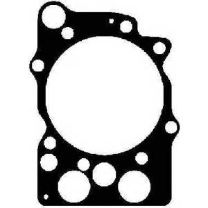 613108510 reinz прокладка головки блока (TD122/TD123)