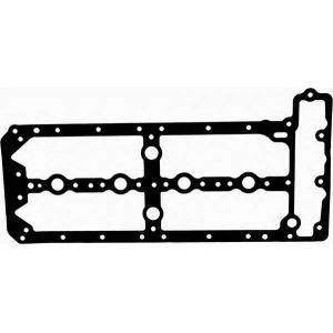 713837100 reinz Прокладка клапанної кришки PEUGEOT/CITROEN/FIAT Du