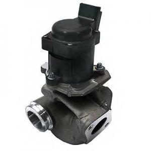 SIDAT 83.613 EGR valve