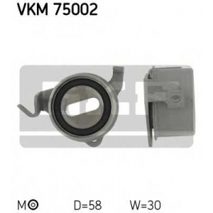 SKF VKM 75002
