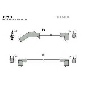 TESLA T124G