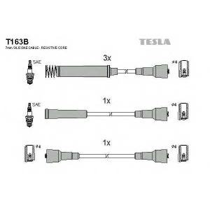 TESLA T163B