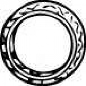 WALKER 80141 Кольцо глушителя